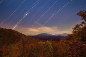 Star Trails. Joye Arden Durham.