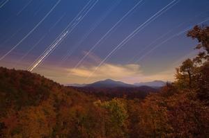 Star Trails. Joye Arden Durham.